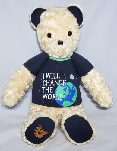 13 - BearyHuggables_I will change the world with tiger memory bear