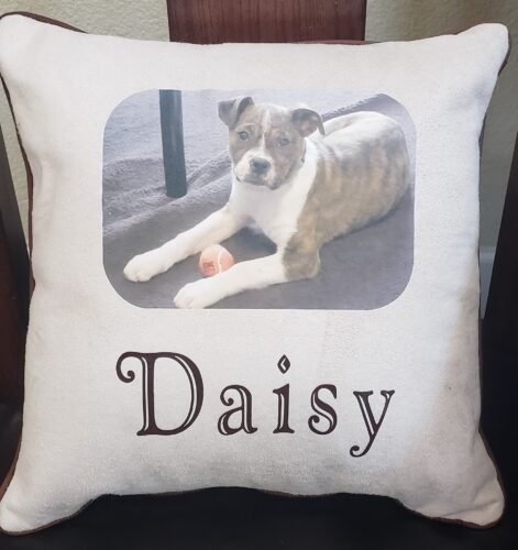 97-Beary Huggables_14 x 14 Daisy Memory Pillow